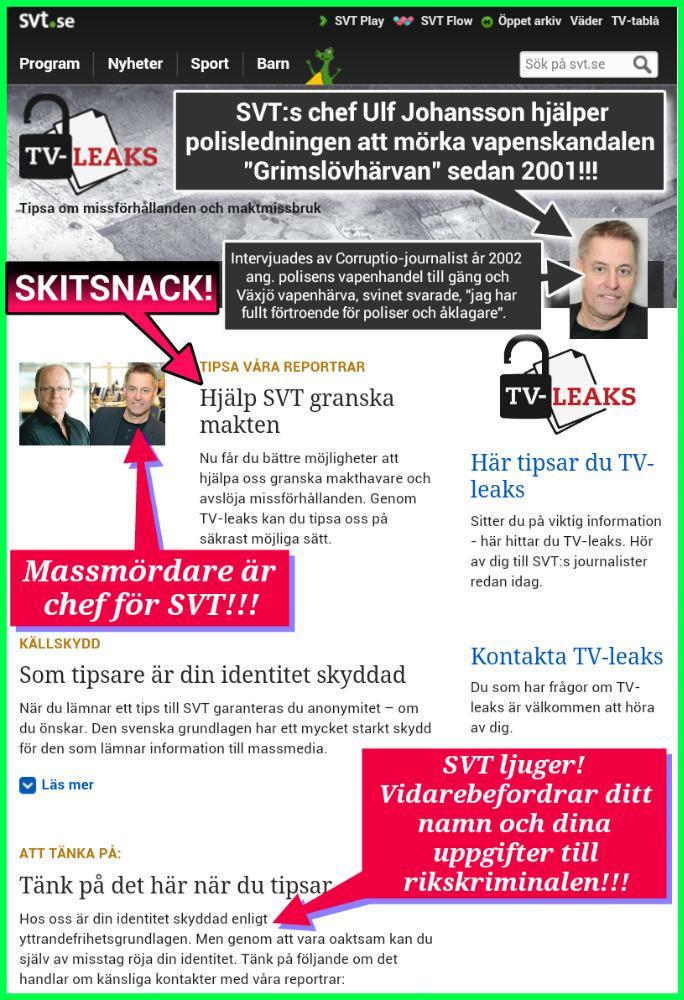 ULF JOHANSSON_SVT_MEDIA_UPPDRAG GRANSKNING_ANONYM_HYCKLARE